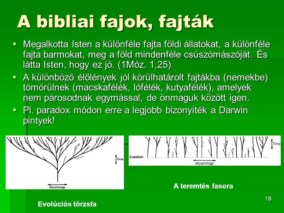 18 A bibliai fajok, fajták  Megalkotta Isten a különféle fajta földi állatokat, a különféle fajta barmokat, meg a föld mindenféle csúszómászóját.
