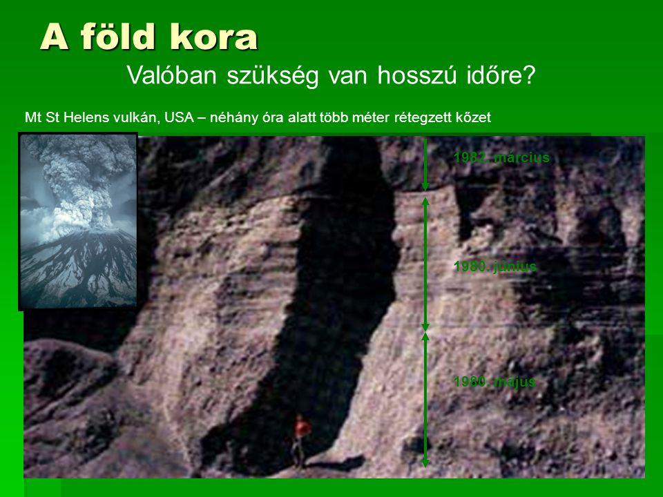 46 A föld kora Mt St Helens vulkán, USA – néhány óra alatt több méter rétegzett kőzet 1980.