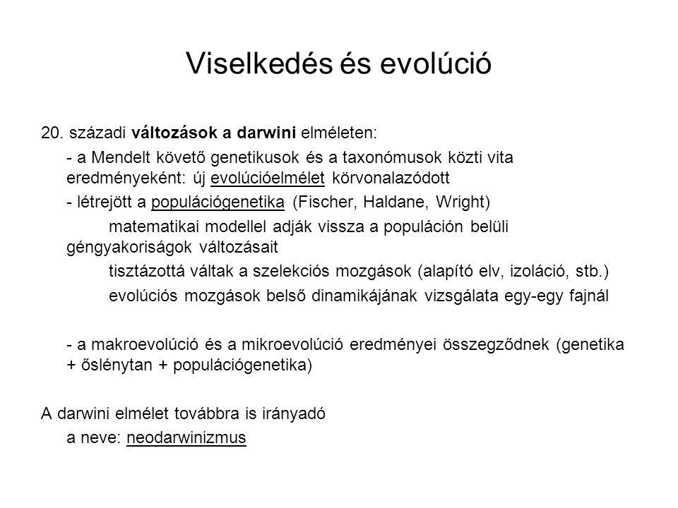 Viselkedés és evolúció 20. századi változások a darwini elméleten: - a Mendelt követő genetikusok és a taxonómusok közti vita eredményeként: új evolúc