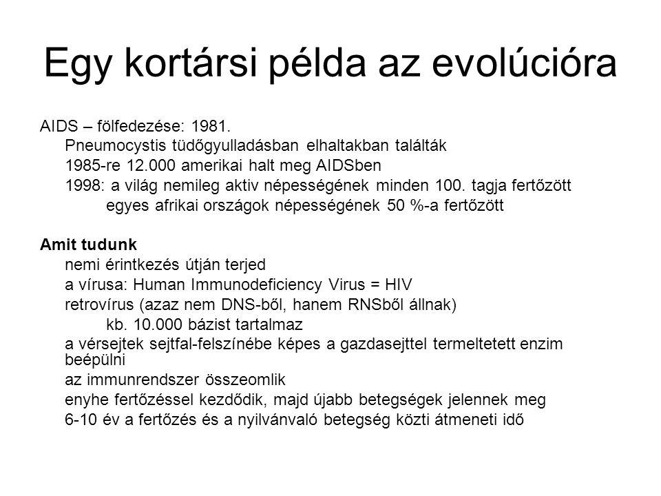 Egy kortársi példa az evolúcióra AIDS – fölfedezése: 1981. Pneumocystis tüdőgyulladásban elhaltakban találták 1985-re 12.000 amerikai halt meg AIDSben