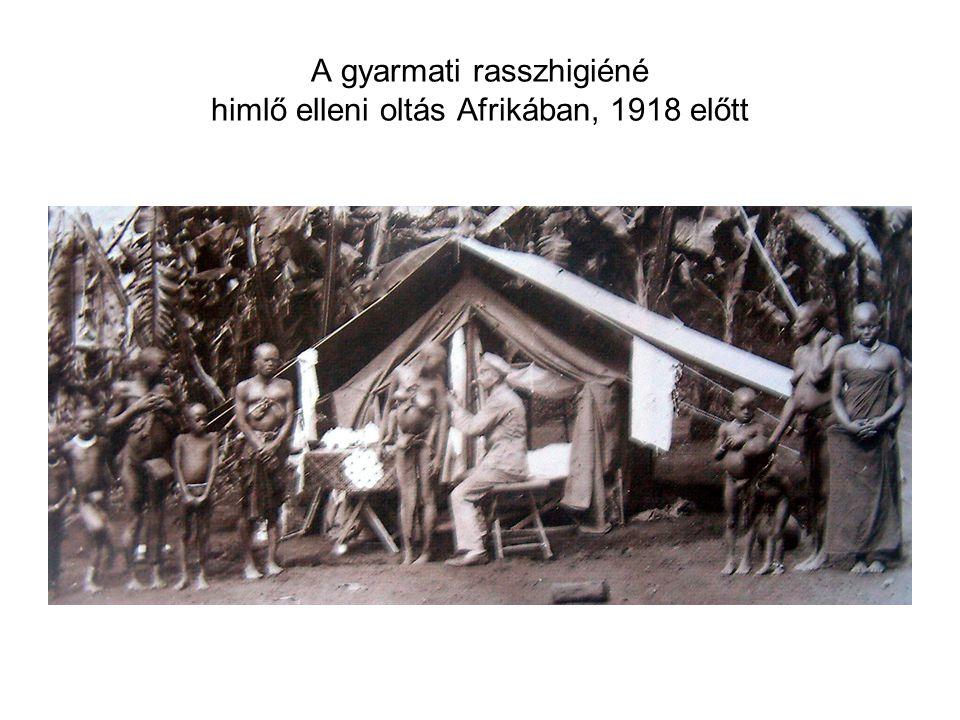A gyarmati rasszhigiéné himlő elleni oltás Afrikában, 1918 előtt