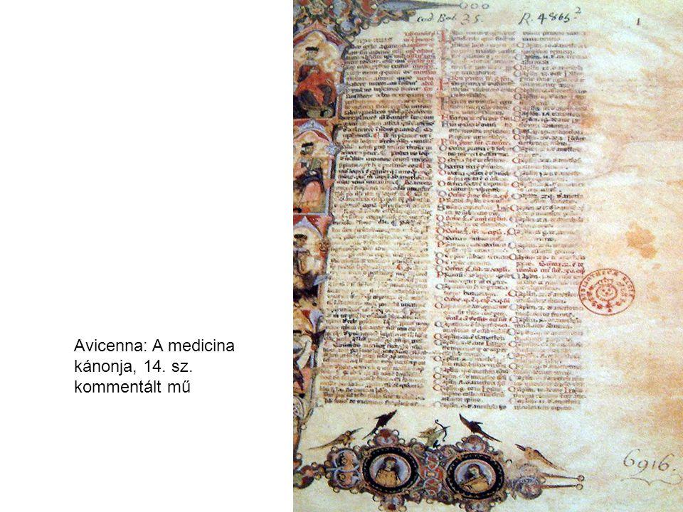 Avicenna: A medicina kánonja, 14. sz. kommentált mű
