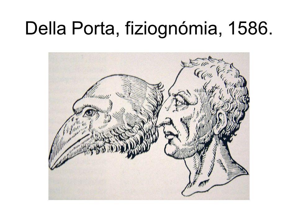 Della Porta, fiziognómia, 1586.