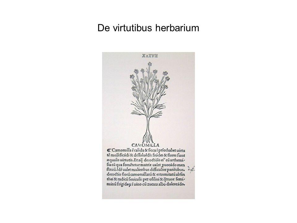 De virtutibus herbarium