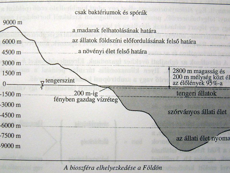A vizsgálódás köre Az ökológia szó első használója: Ernst Haeckel, zoológus, 1869.