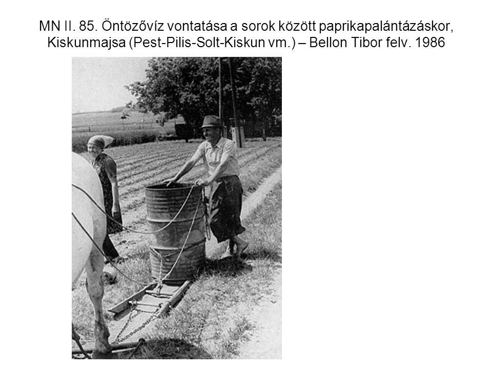 MN II. 85. Öntözővíz vontatása a sorok között paprikapalántázáskor, Kiskunmajsa (Pest-Pilis-Solt-Kiskun vm.) – Bellon Tibor felv. 1986