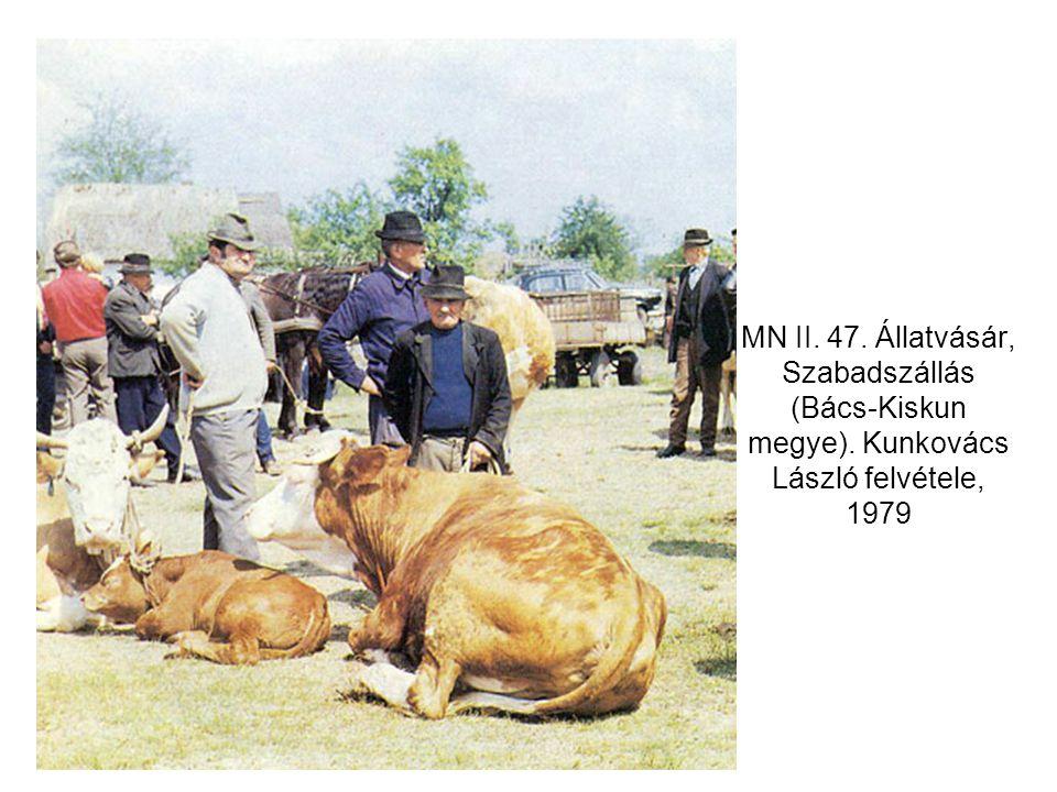 MN II. 47. Állatvásár, Szabadszállás (Bács-Kiskun megye). Kunkovács László felvétele, 1979