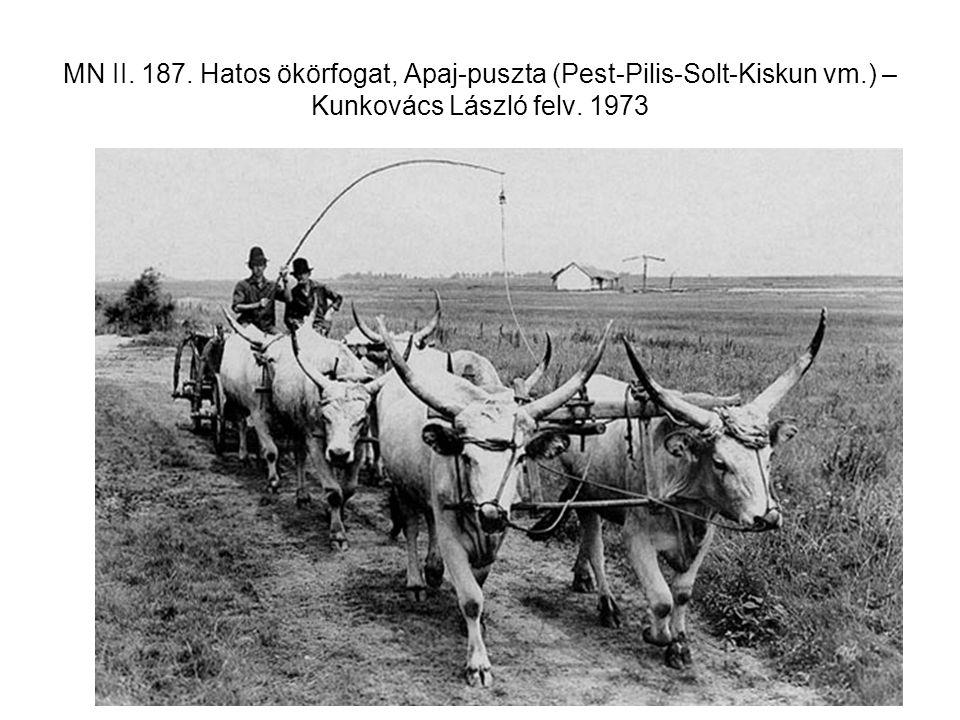 MN II. 187. Hatos ökörfogat, Apaj-puszta (Pest-Pilis-Solt-Kiskun vm.) – Kunkovács László felv. 1973