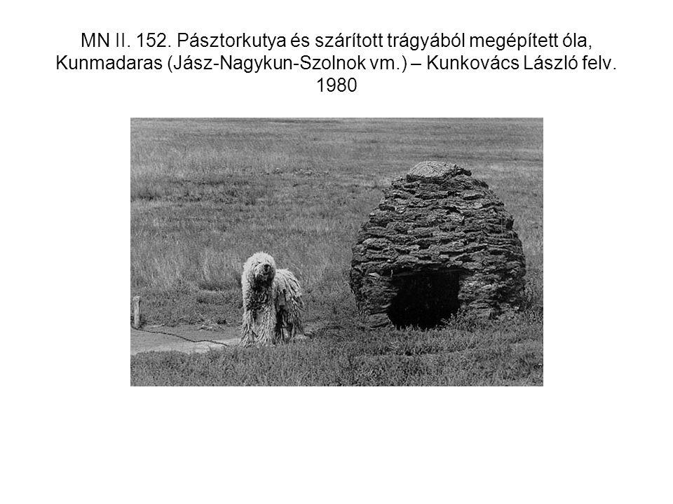 MN II. 152. Pásztorkutya és szárított trágyából megépített óla, Kunmadaras (Jász-Nagykun-Szolnok vm.) – Kunkovács László felv. 1980