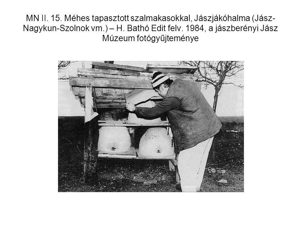 MN II. 15. Méhes tapasztott szalmakasokkal, Jászjákóhalma (Jász- Nagykun-Szolnok vm.) – H. Bathó Edit felv. 1984, a jászberényi Jász Múzeum fotógyűjte