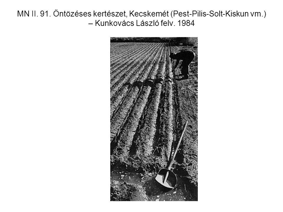 MN II. 91. Öntözéses kertészet, Kecskemét (Pest-Pilis-Solt-Kiskun vm.) – Kunkovács László felv. 1984