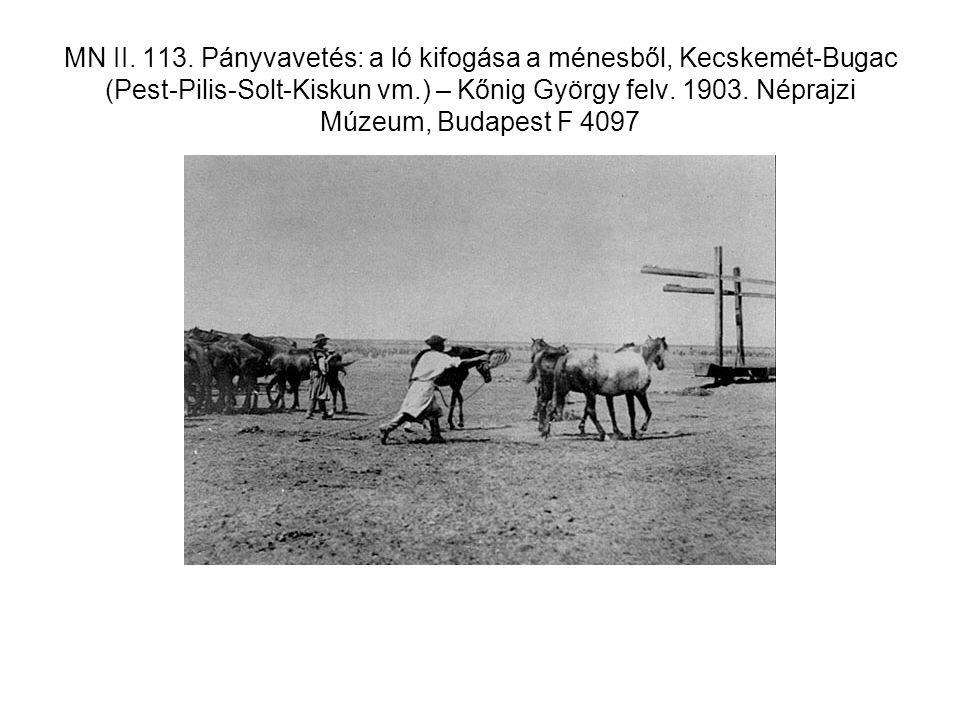 MN II. 113. Pányvavetés: a ló kifogása a ménesből, Kecskemét-Bugac (Pest-Pilis-Solt-Kiskun vm.) – Kőnig György felv. 1903. Néprajzi Múzeum, Budapest F
