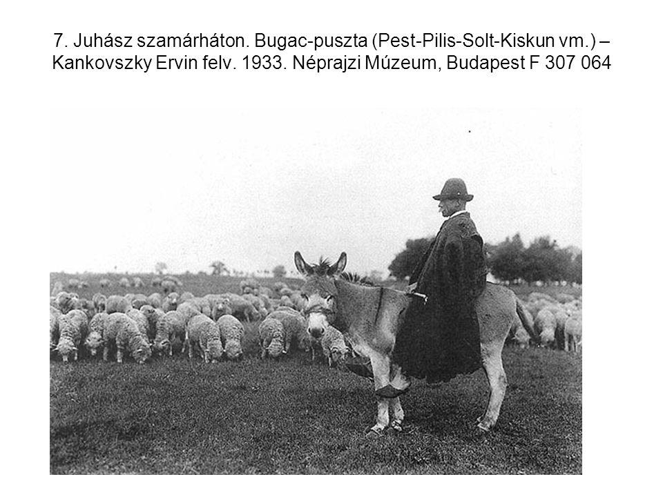 7. Juhász szamárháton. Bugac-puszta (Pest-Pilis-Solt-Kiskun vm.) – Kankovszky Ervin felv. 1933. Néprajzi Múzeum, Budapest F 307 064