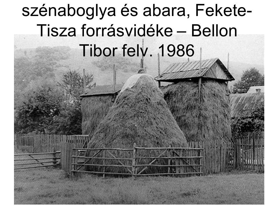 MN II. k. 54. kép: Körülkerített szénaboglya és abara, Fekete- Tisza forrásvidéke – Bellon Tibor felv. 1986