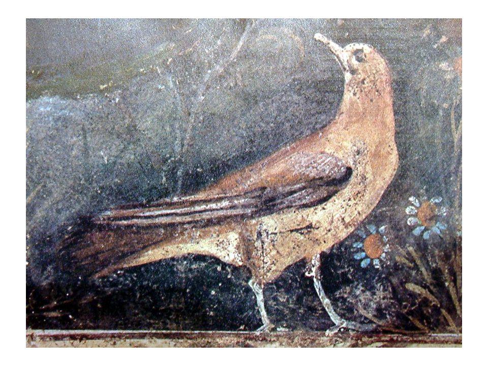 Pompeji, Casa dei Bracciale d'oro