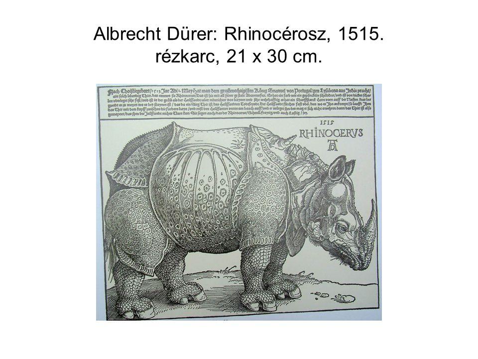 Albrecht Dürer: Rhinocérosz, 1515. rézkarc, 21 x 30 cm.