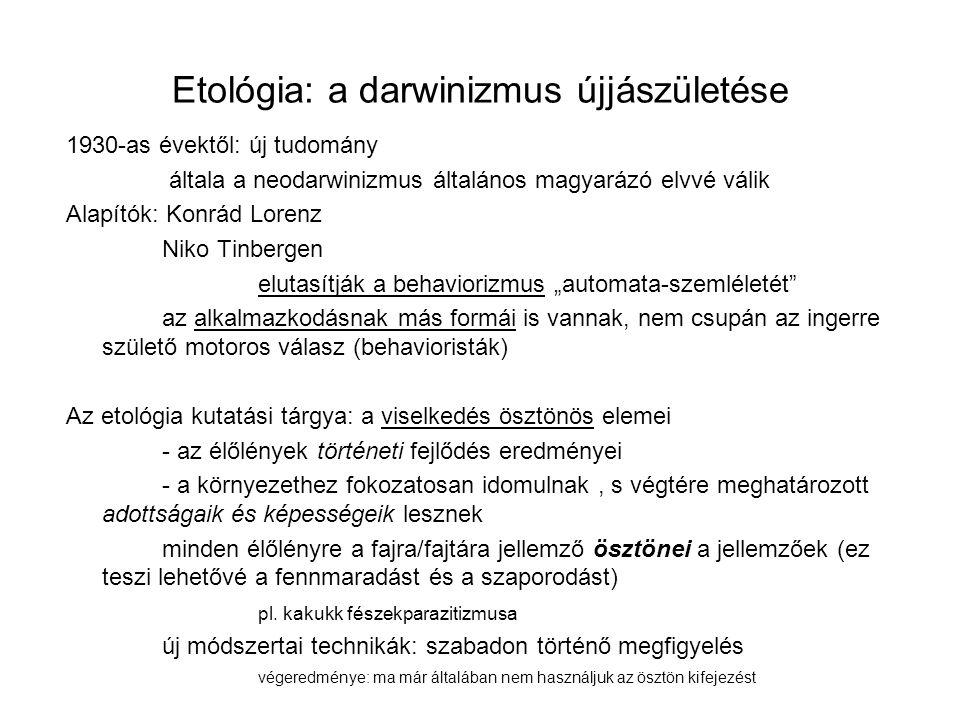 """Etológia: a darwinizmus újjászületése 1930-as évektől: új tudomány általa a neodarwinizmus általános magyarázó elvvé válik Alapítók: Konrád Lorenz Niko Tinbergen elutasítják a behaviorizmus """"automata-szemléletét az alkalmazkodásnak más formái is vannak, nem csupán az ingerre születő motoros válasz (behavioristák) Az etológia kutatási tárgya: a viselkedés ösztönös elemei - az élőlények történeti fejlődés eredményei - a környezethez fokozatosan idomulnak, s végtére meghatározott adottságaik és képességeik lesznek minden élőlényre a fajra/fajtára jellemző ösztönei a jellemzőek (ez teszi lehetővé a fennmaradást és a szaporodást) pl."""