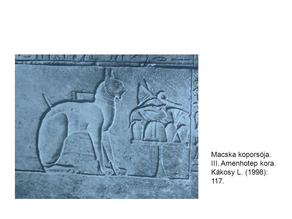 Macska koporsója. III. Amenhotep kora. Kákosy L. (1998): 117.