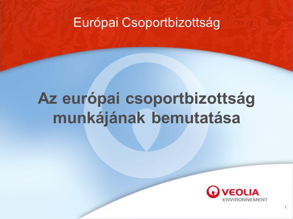 1 Az európai csoportbizottság munkájának bemutatása Európai Csoportbizottság