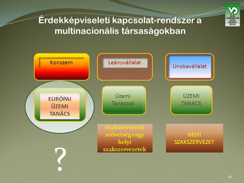 Érdekképviseleti kapcsolat-rendszer a multinacionális társaságokban Szakszervezeti szövetség vagy helyi szakszervezetek Leányvállalat ÜZEMI TANÁCS Unokavállalat Üzemi Tanácsok EURÓPAI ÜZEMI TANÁCS Konszern HELYI SZAKSZERVEZET .