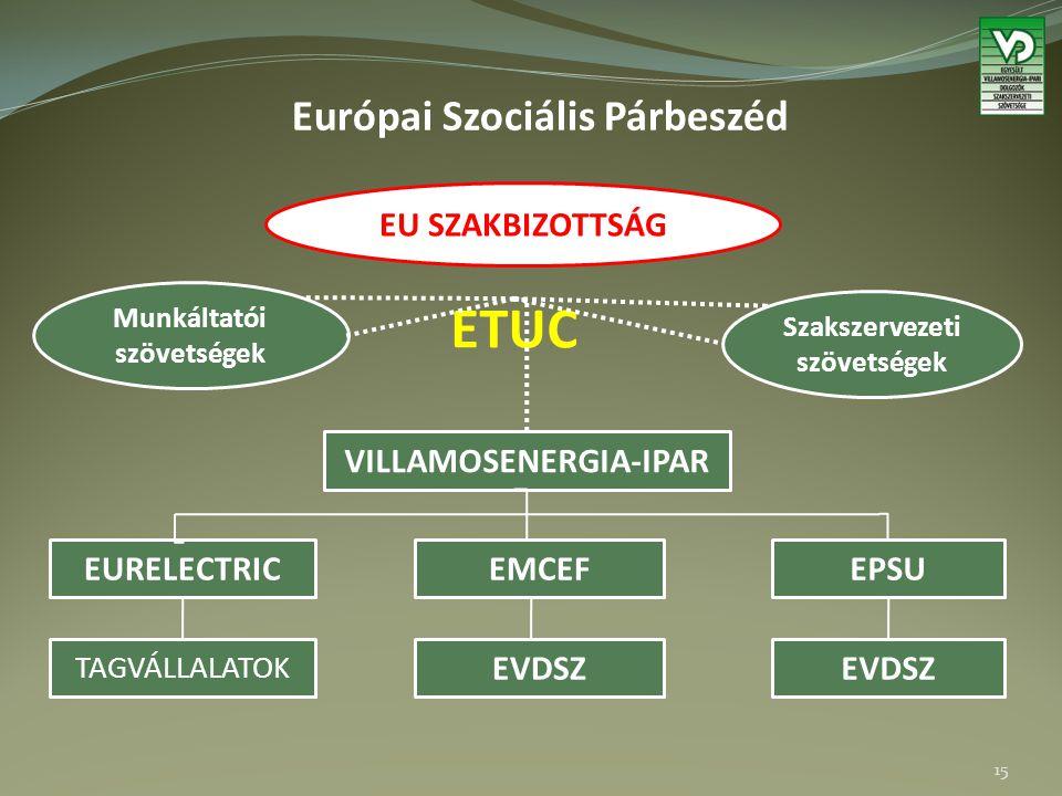 Európai Szociális Párbeszéd 15 EU SZAKBIZOTTSÁG ETUC Munkáltatói szövetségek Szakszervezeti szövetségek VILLAMOSENERGIA-IPAR EURELECTRIC TAGVÁLLALATOK EMCEF EVDSZ EPSU EVDSZ