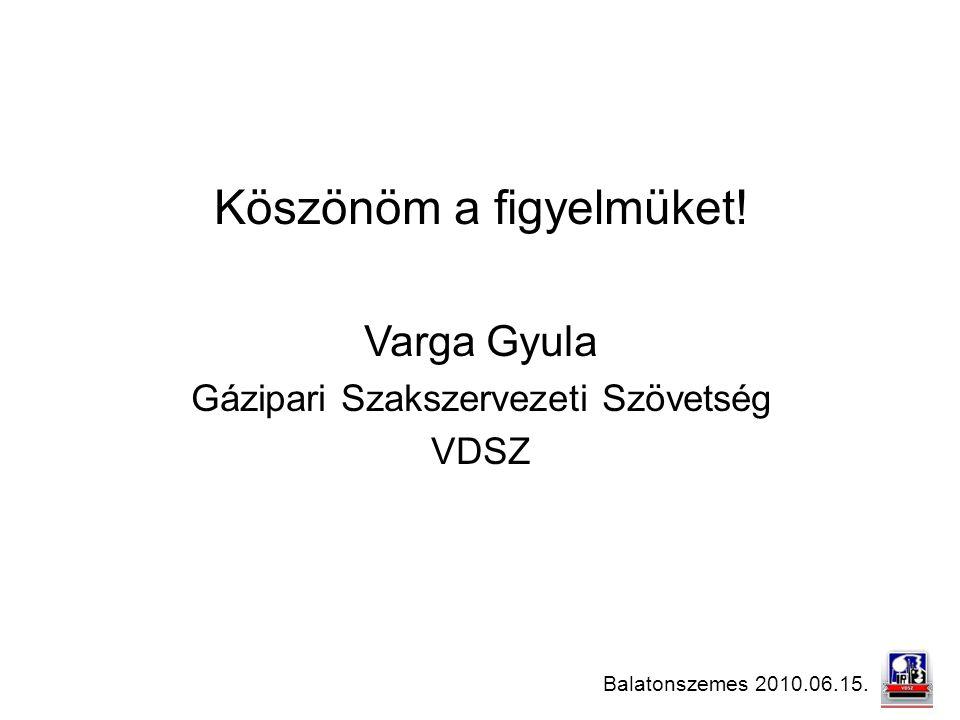 Balatonszemes 2010.06.15. Köszönöm a figyelmüket! Varga Gyula Gázipari Szakszervezeti Szövetség VDSZ