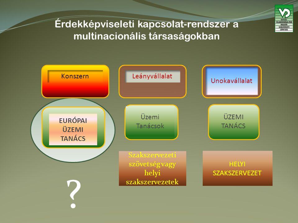 Érdekképviseleti kapcsolat-rendszer a multinacionális társaságokban Szakszervezeti szövetség vagy helyi szakszervezetek Leányvállalat ÜZEMI TANÁCS Unokavállalat Üzemi Tanácsok EURÓPAI ÜZEMI TANÁCS Konszern HELYI SZAKSZERVEZET