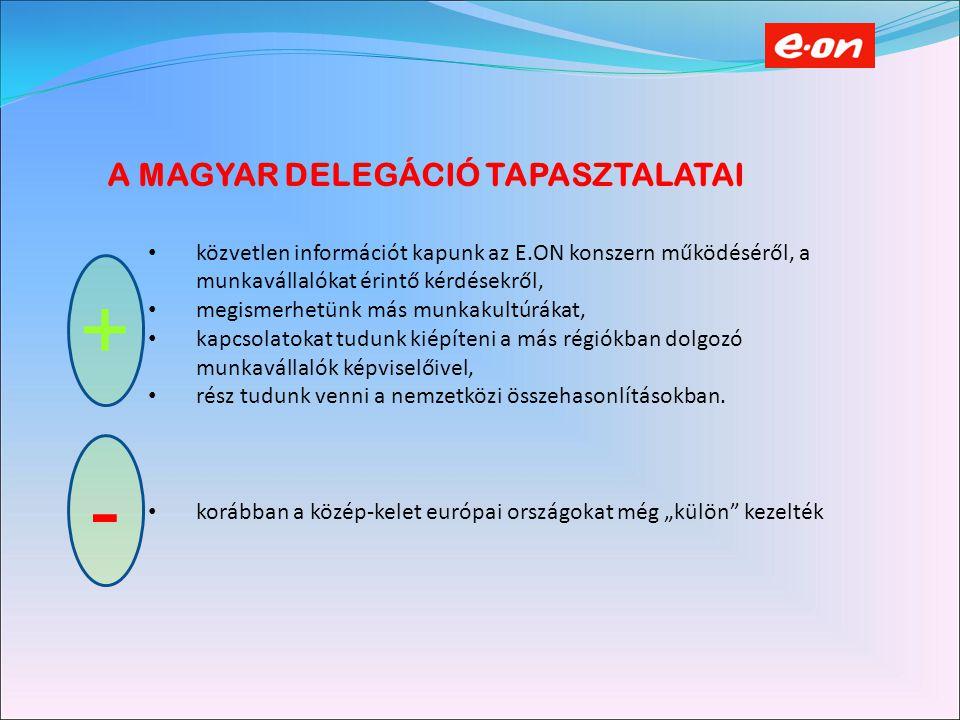 A MAGYAR DELEGÁCIÓ TAPASZTALATAI közvetlen információt kapunk az E.ON konszern működéséről, a munkavállalókat érintő kérdésekről, megismerhetünk más munkakultúrákat, kapcsolatokat tudunk kiépíteni a más régiókban dolgozó munkavállalók képviselőivel, rész tudunk venni a nemzetközi összehasonlításokban.