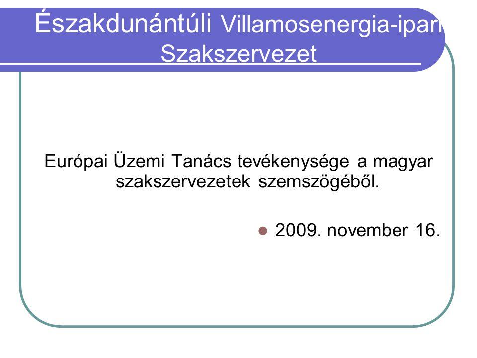Európai Üzemi Tanács tevékenysége a magyar szakszervezetek szemszögéből.