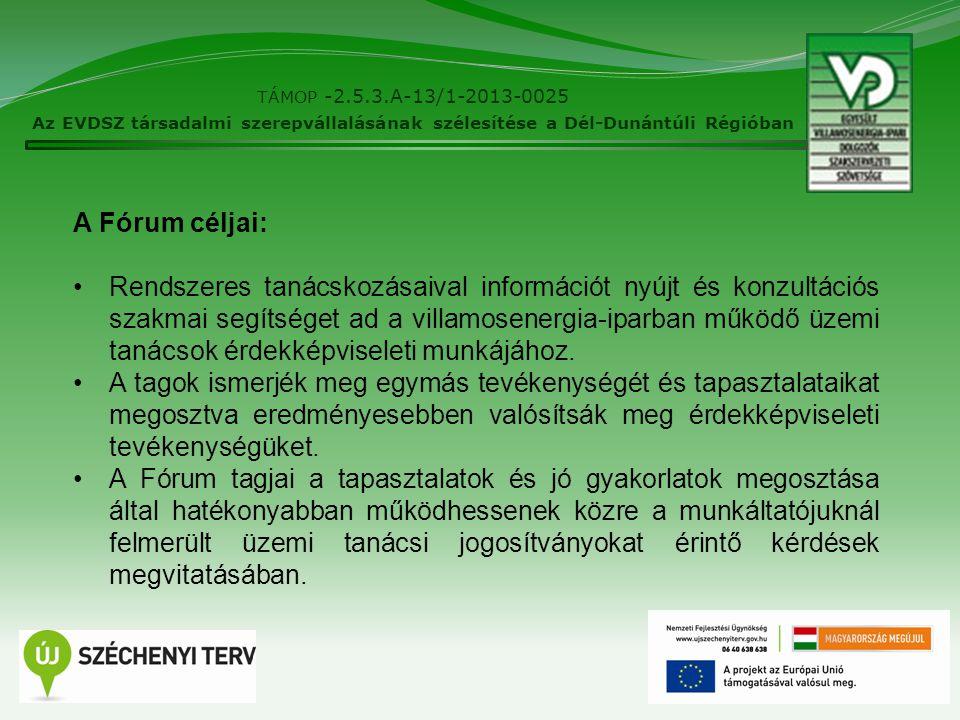 6 TÁMOP -2.5.3.A-13/1-2013-0025 Az EVDSZ társadalmi szerepvállalásának szélesítése a Dél-Dunántúli Régióban A Fórum céljai: Rendszeres tanácskozásaival információt nyújt és konzultációs szakmai segítséget ad a villamosenergia-iparban működő üzemi tanácsok érdekképviseleti munkájához.