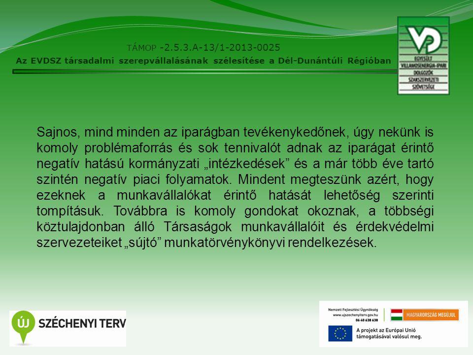 """8 TÁMOP -2.5.3.A-13/1-2013-0025 Az EVDSZ társadalmi szerepvállalásának szélesítése a Dél-Dunántúli Régióban Sajnos, mind minden az iparágban tevékenykedőnek, úgy nekünk is komoly problémaforrás és sok tennivalót adnak az iparágat érintő negatív hatású kormányzati """"intézkedések és a már több éve tartó szintén negatív piaci folyamatok."""