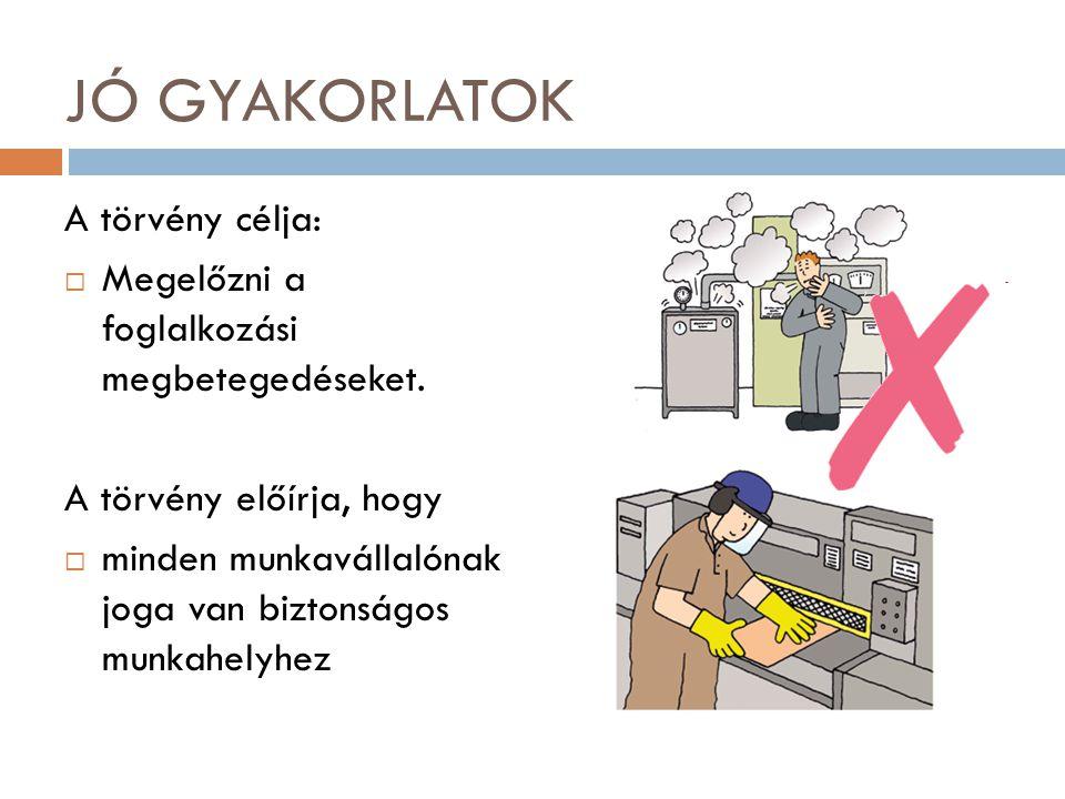 JÓ GYAKORLATOK A törvény célja:  Megelőzni a foglalkozási megbetegedéseket. A törvény előírja, hogy  minden munkavállalónak joga van biztonságos mun