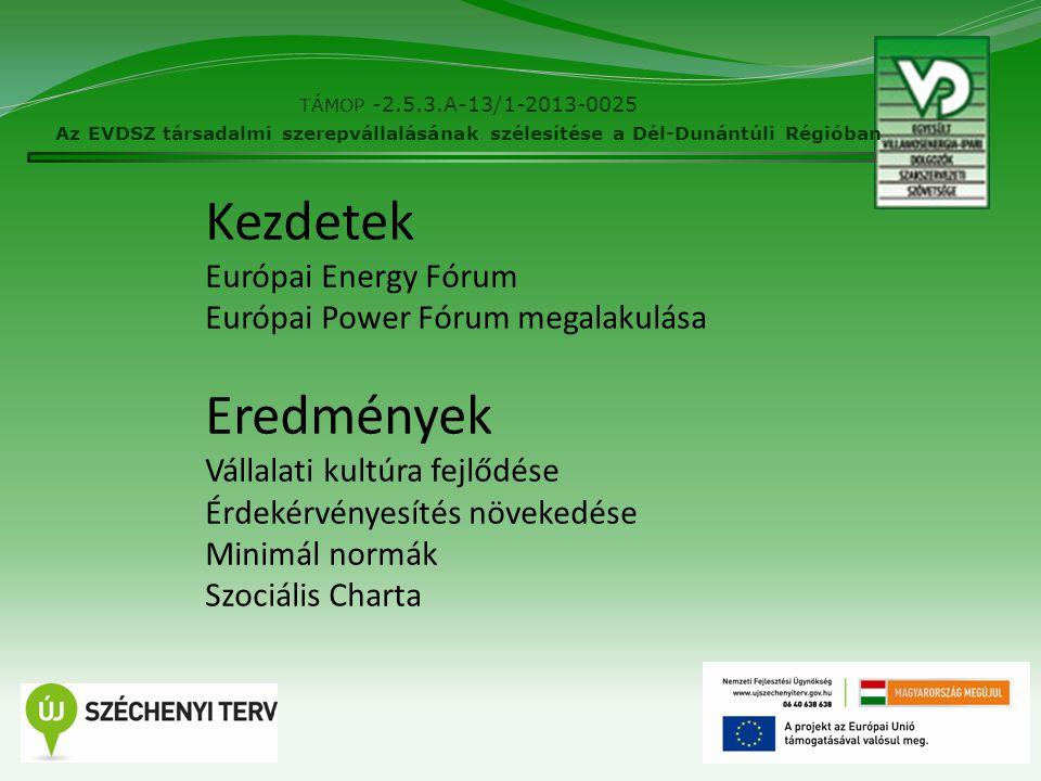2 TÁMOP -2.5.3.A-13/1-2013-0025 Az EVDSZ társadalmi szerepvállalásának szélesítése a Dél-Dunántúli Régióban Kezdetek Európai Energy Fórum Európai Powe