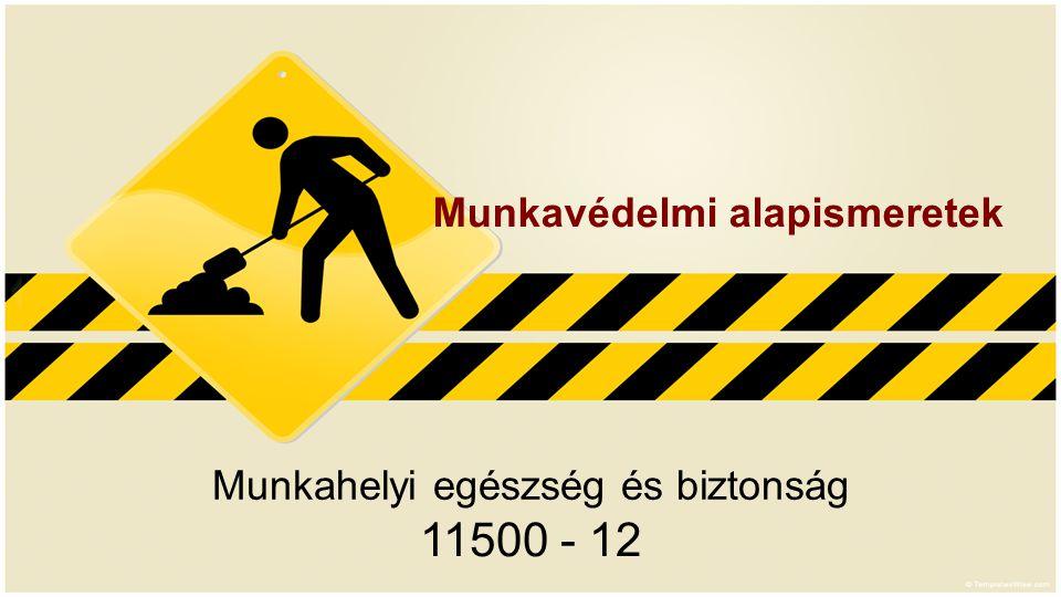 Munkahelyi egészség és biztonság 11500 - 12 Munkavédelmi alapismeretek