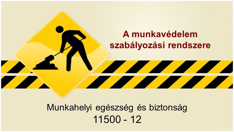 Munkahelyi egészség és biztonság 11500 - 12 A munkavédelem szabályozási rendszere