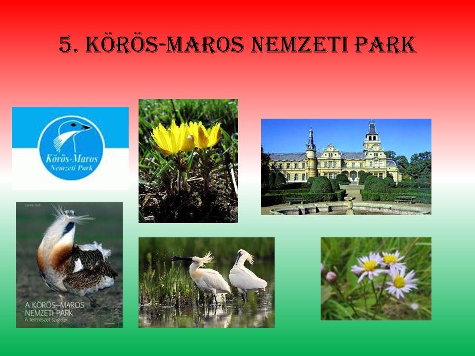 5. Körös-maros nemzeti park