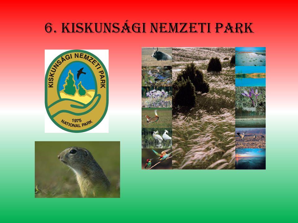 6. Kiskunsági nemzeti park