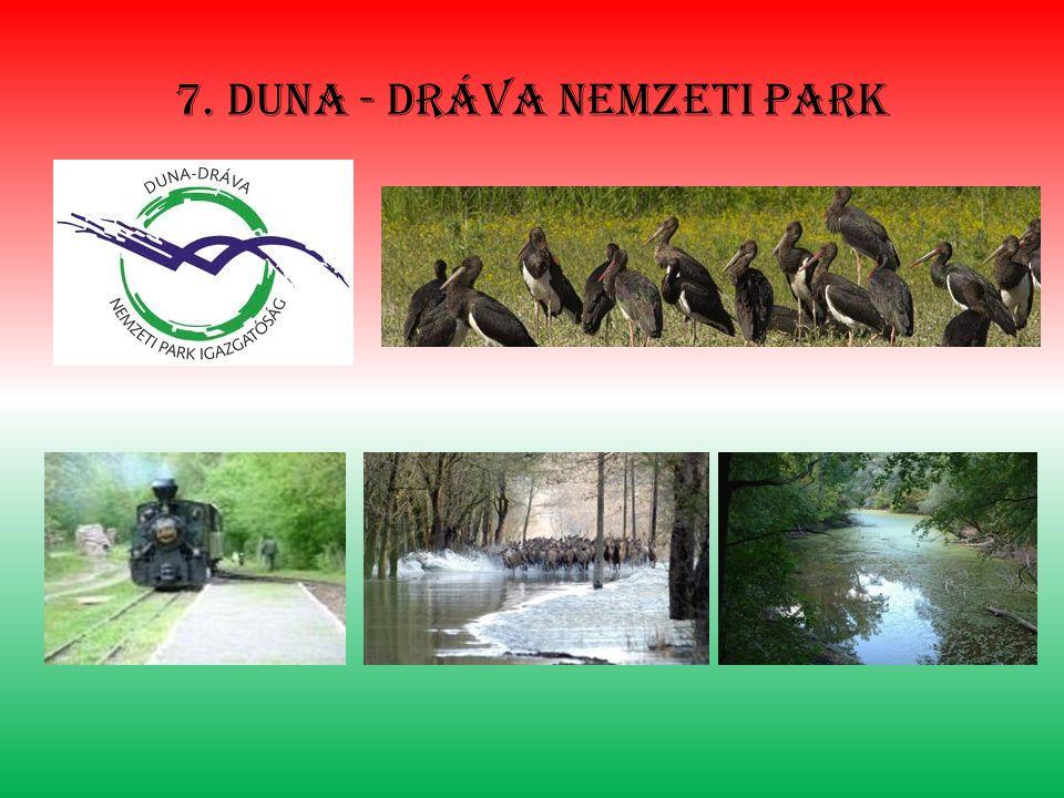 7. Duna - dráva nemzeti park