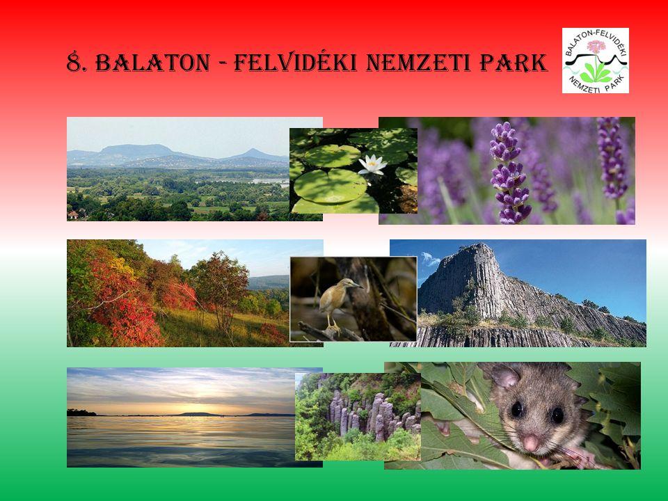 8. Balaton - felvidéki nemzeti park