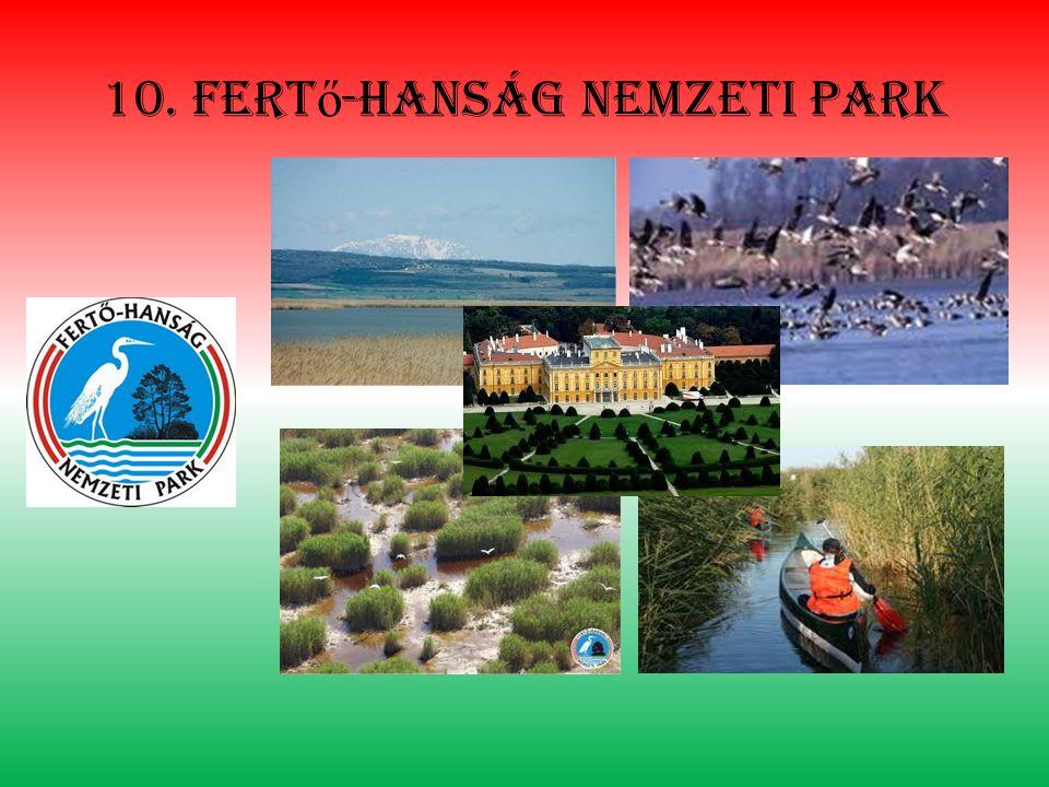 10. fert ő -hanság nemzeti park