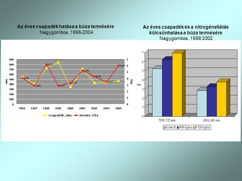 Az éves csapadék hatása a búza termésére Nagygombos, 1996-2004 Az éves csapadék és a nitrogénellátás kölcsönhatása a búza termésére Nagygombos, 1998;2002
