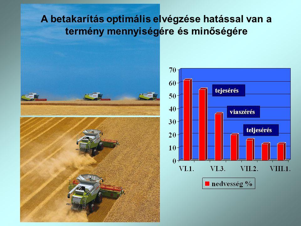 tejesérés viaszérés teljesérés A betakarítás optimális elvégzése hatással van a termény mennyiségére és minőségére