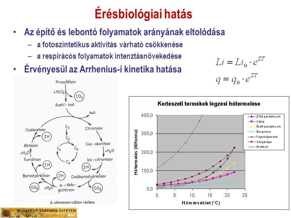 Érésbiológiai hatás Az építő és lebontó folyamatok arányának eltolódása – a fotoszintetikus aktivitás várható csökkenése – a respirácós folyamatok int