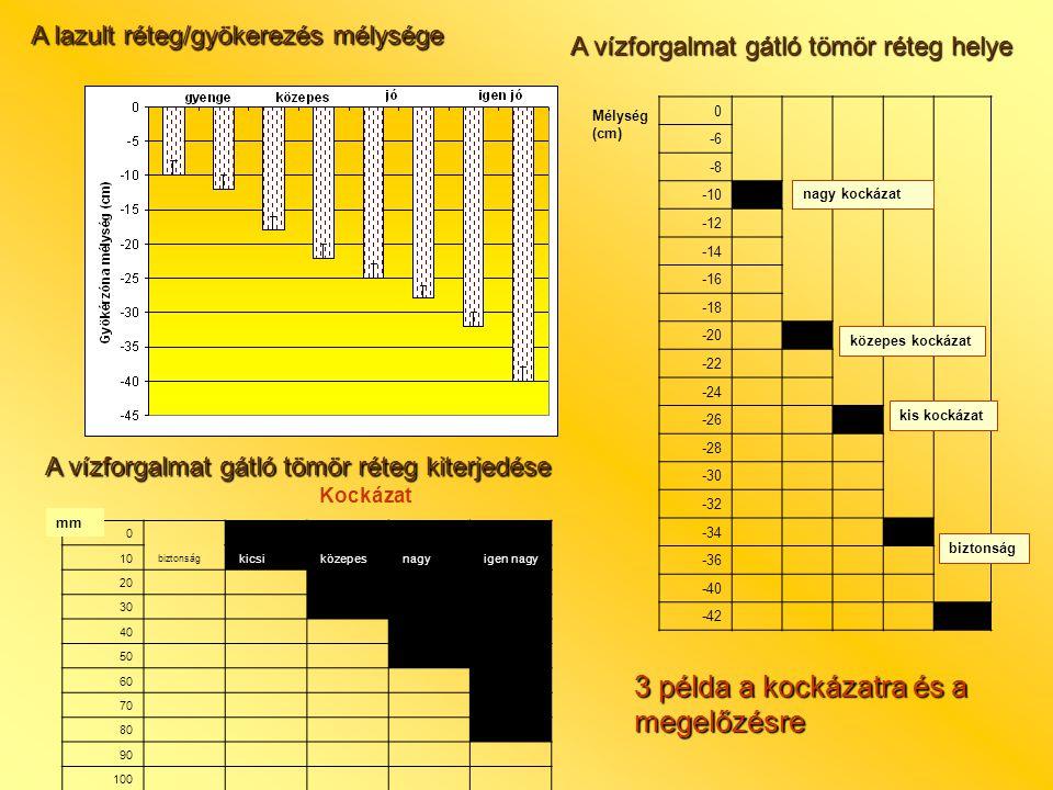 A lazult réteg/gyökerezés mélysége 0 -6 -8 -10 -12 -14 -16 -18 -20 -22 -24 -26 -28 -30 -32 -34 -36 -40 -42 A vízforgalmat gátló tömör réteg helye nagy kockázat közepes kockázat kis kockázat biztonság Mélység (cm) 0 biztonság 10 kicsi közepes nagy igen nagy 20 30 40 50 60 70 80 90 100 A vízforgalmat gátló tömör réteg kiterjedése Kockázat 3 példa a kockázatra és a megelőzésre mm