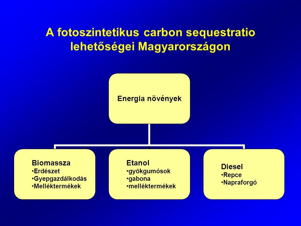 A fotoszintetikus carbon sequestratio lehetőségei Magyarországon Energia növények Biomassza Erdészet Gyepgazdálkodás Melléktermékek Etanol gyökgumósok