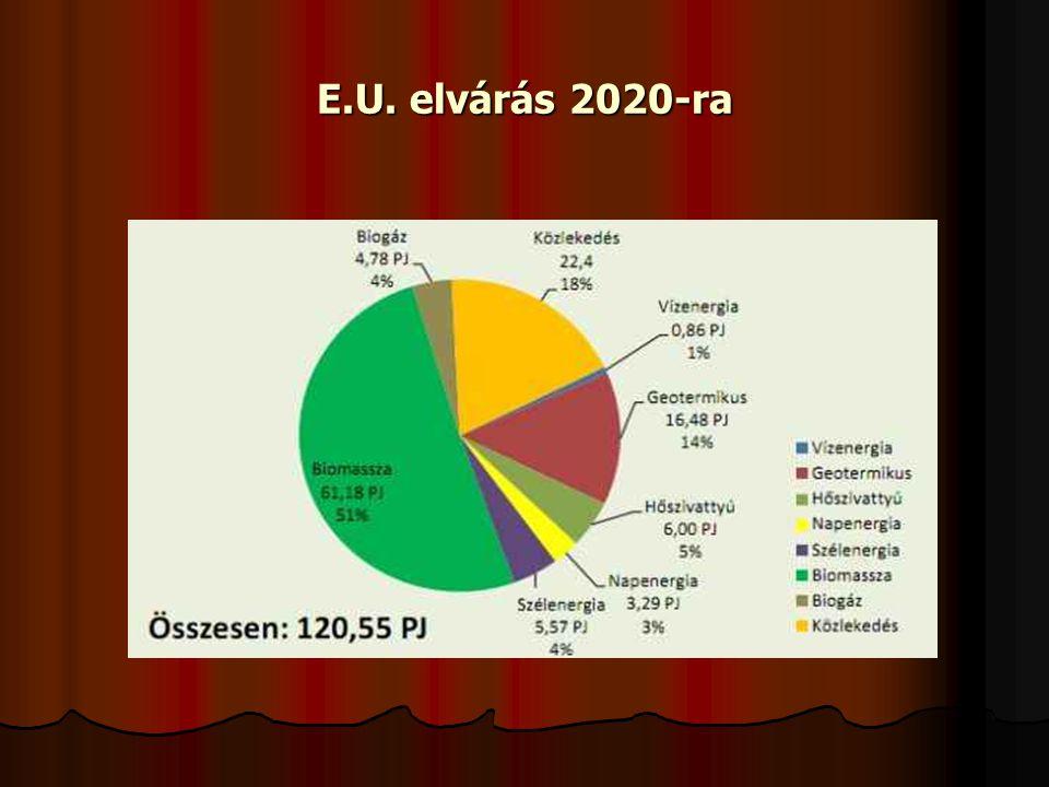E.U. elvárás 2020-ra