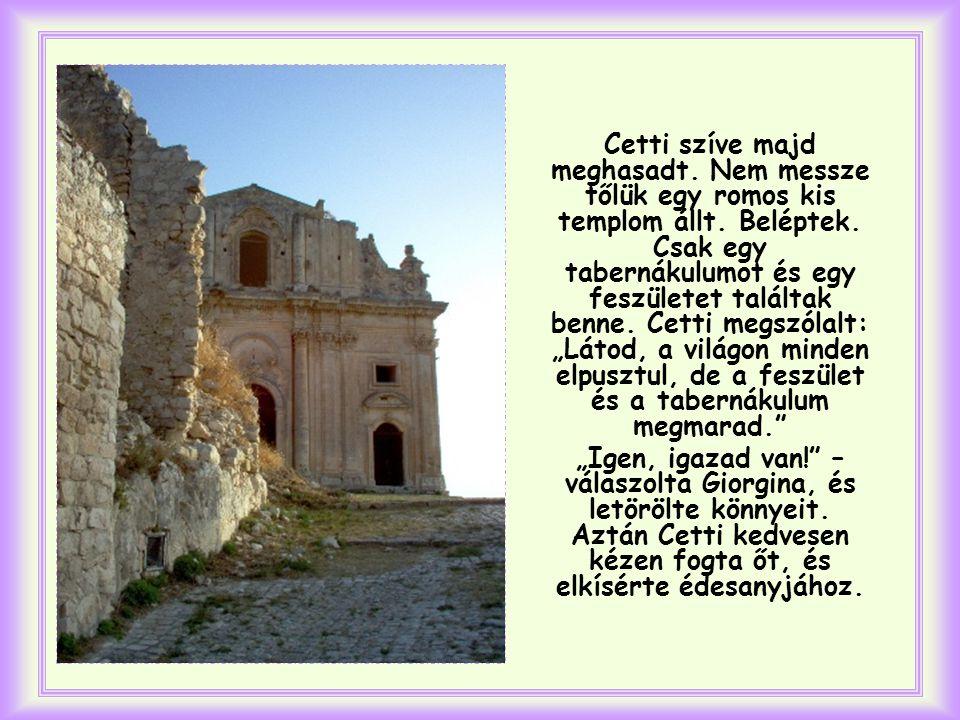 Cetti érezte, hogy nagy baj van, és segíteni akart.
