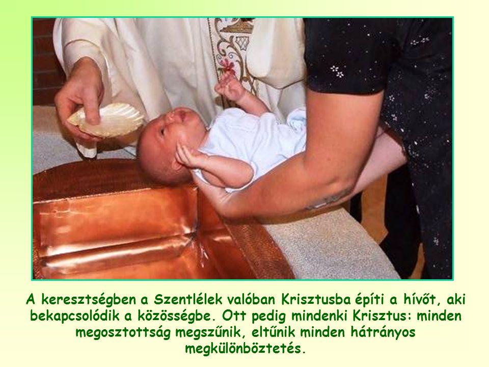 Mert tény, hogy ez az egyedülálló test, amelyet a közösség tagjai alkotnak, valóban Krisztus teste.