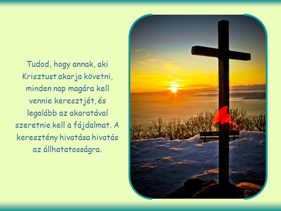 Tudod, hogy annak, aki Krisztust akarja követni, minden nap magára kell vennie keresztjét, és legalább az akaratával szeretnie kell a fájdalmat.