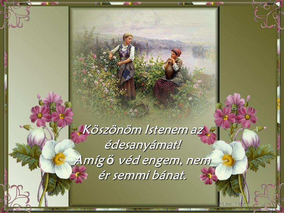 Áldd meg imádságát, melyben el nem fárad, Áldd meg két kezeddel az édesanyámat!